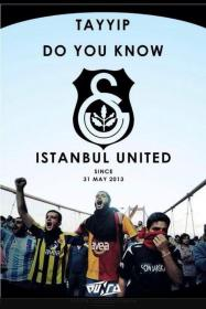 Istanbul_United_(A_brochure_about_the_Taksim_Gezi_Park_protests)